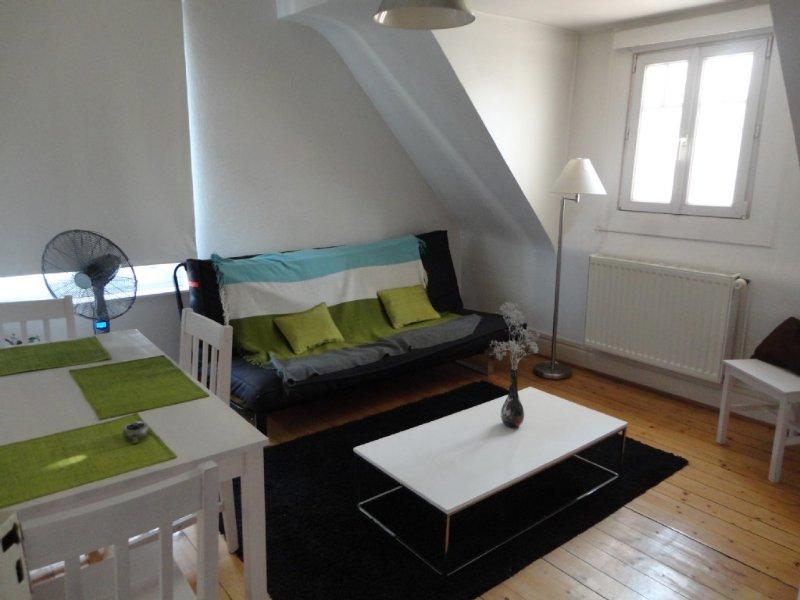 Charmant 2 Pièces Dernier Étage Dans Maison, vacation rental in Lingolsheim