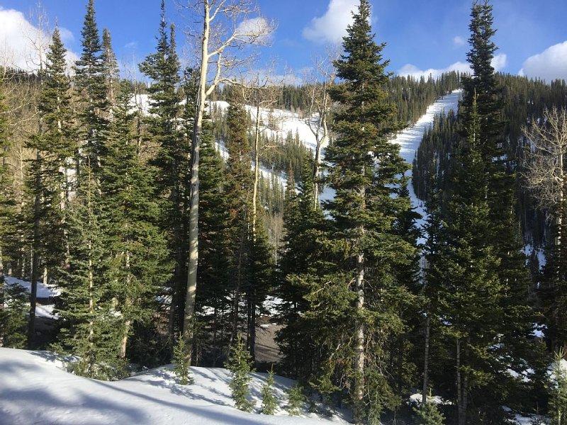 Ski-In/ski-Out At Eagle Point Ski Resort - Snowflake #12 - 1 Bedroom Condo, aluguéis de temporada em Beaver