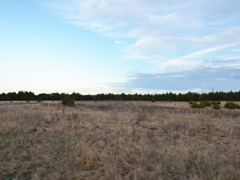 100 Acres of Pasture and creek land