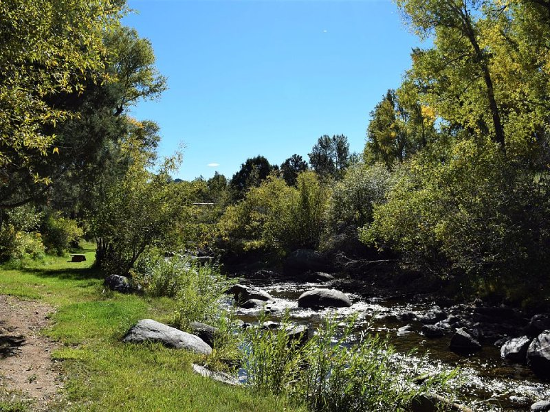 Glorious location on the creek with private fishing yet only 1/2 mile to town, location de vacances à Buena Vista