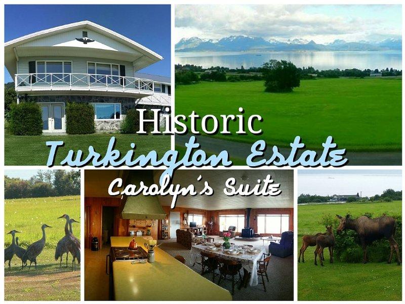 Historic - Private 28 Acres - 180° Ocean View! - Carolyn's Suite, location de vacances à Fritz Creek