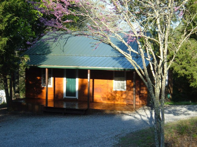 CEDAR CREST CABIN NEAR DOUGLAS LAKE.COZY AND RUSTIC, holiday rental in Newport