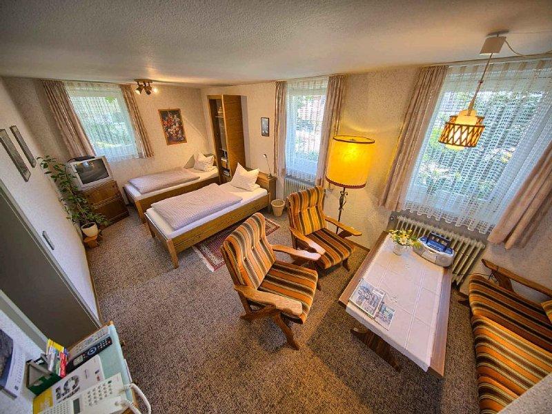 Nichtraucher-Ferienwohnung mit 50 qm, 1 Wohn-/Schlafraum, 1 Esszimmer, location de vacances à Schonach