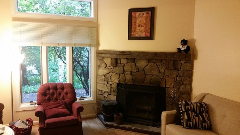 1 BR condo w/ internet sleeps 4.  Only 2 min walk to top of Mt., vacation rental in Wintergreen