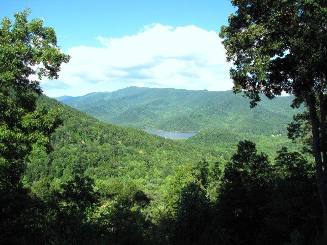 Asheville Mountain Chateaux with million dollar views and a large Hot Tub, alquiler vacacional en Black Mountain