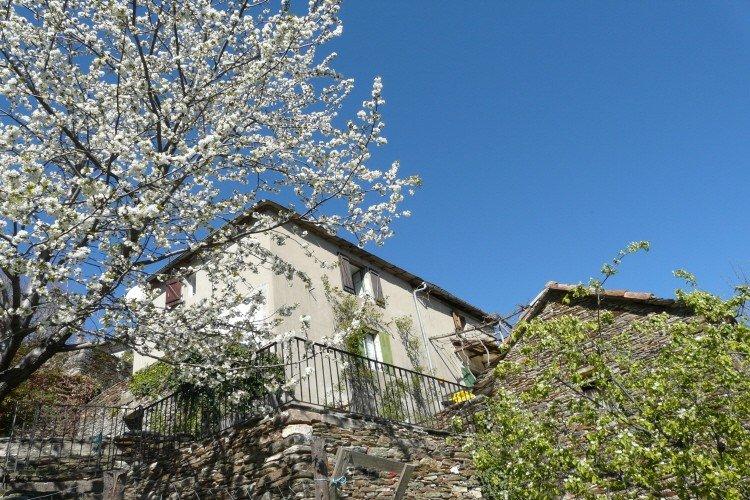 Restored Cevenol farmhouse, holiday rental in Saint-Michel-de-Deze