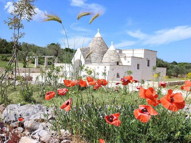 An Ancient Trullo With Pool Nestled With Views Over A Beautiful  Private Valley, holiday rental in Cisternino