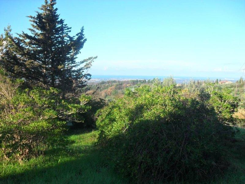 Bilocale, cucina attrezzata, balcone splendida vista mare, giardino, barbecue, alquiler vacacional en Guardistallo