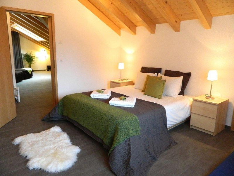 Wonderful 1 Bedroom Apartment Set In The Stunning Lauterbrunnen Valley, holiday rental in Jungfrau Region