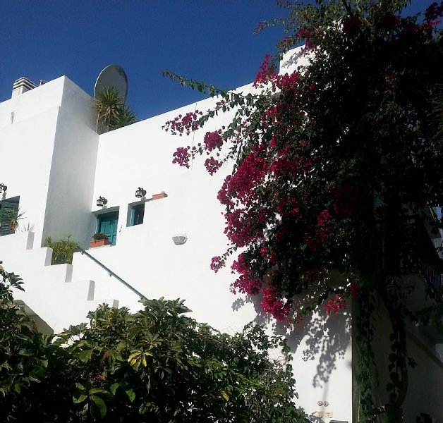 Living in Greek neighborhood, holiday rental in Koronos