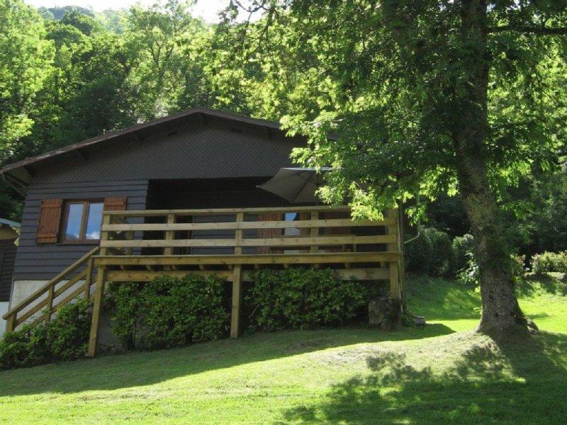 CHALET MONTAGNE (PROMIXITE DE GOURETTE), holiday rental in Buzy