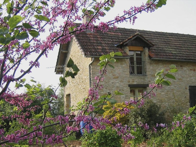 old, charming farmhouse in the heart of the Dordogne, vacation rental in Saint-Andre-d'Allas