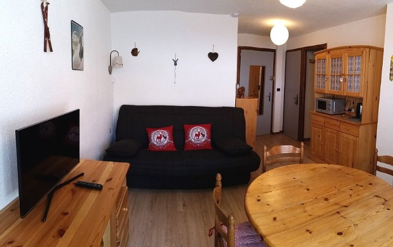 Sixt Fer à Cheval comfortable 2 bedroom apartment 4 pers winter / summer season, holiday rental in Grand Massif