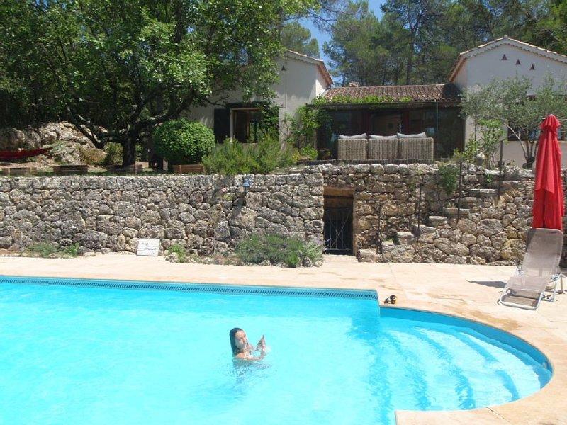 Confort et sérénité dans notre villa provençale:piscine privée en pleine forêt, holiday rental in Cabasse