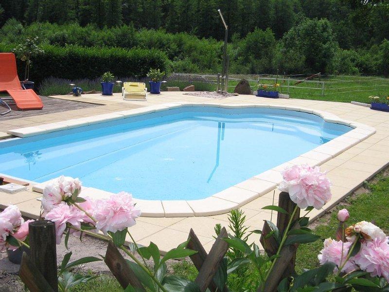 Mirabelle confort  ., holiday rental in Badonviller