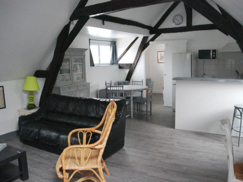 le grenier d'Orange  .  Appart dans maison ancienne à  20 m de la rue piétonne, location de vacances à Vallée de la Loire