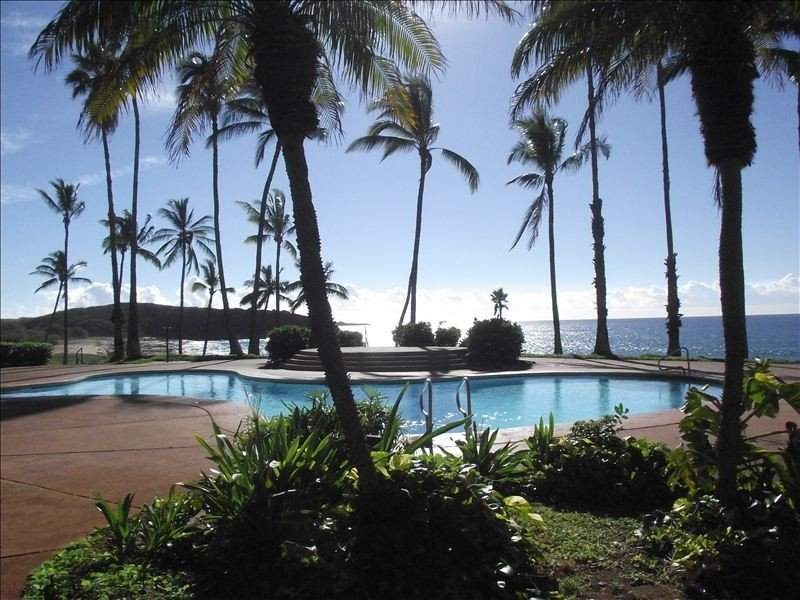 Swim in the pool overlooking the beach and the ocean.