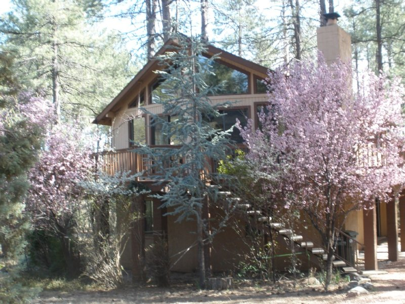 Escape To The Cool Pines, vacation rental in Pine