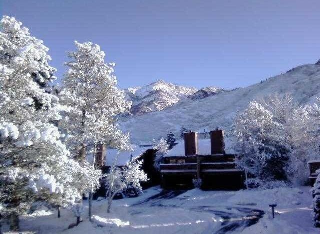 The Best Location to Ski Alta, Snowbird, Solitude and Brighton, holiday rental in Sandy