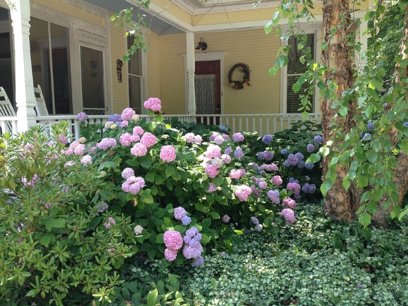 Historic Queen Anne Style Home In Village Of Douglas/Saugatuck-Vintage Splendor, vacation rental in Saugatuck