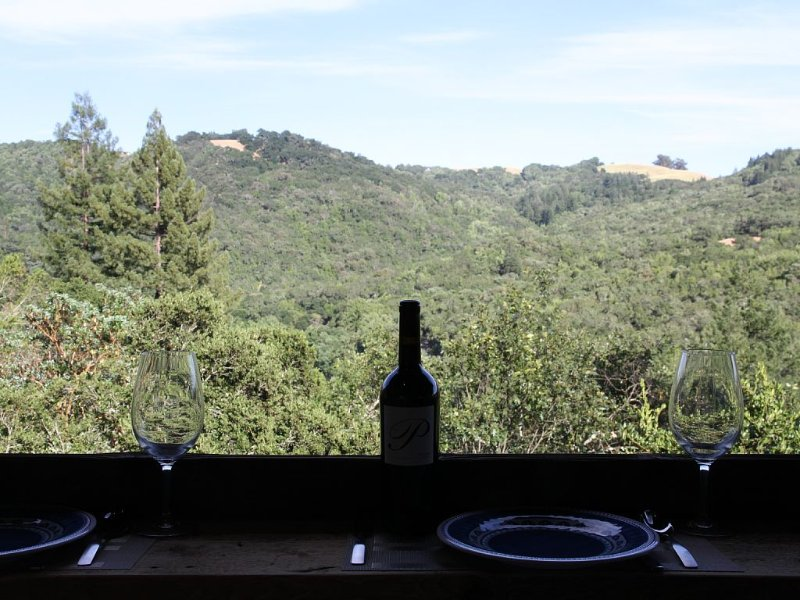 Wooded Restful Retreat, with broad scenic views, outdoor dining, vacation rental in Healdsburg