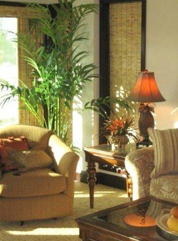Sunshine streams into this luxury living room