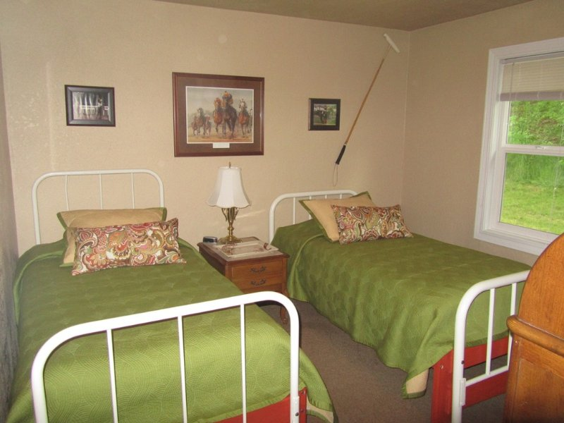 Twin bedroom with antique bed frames.