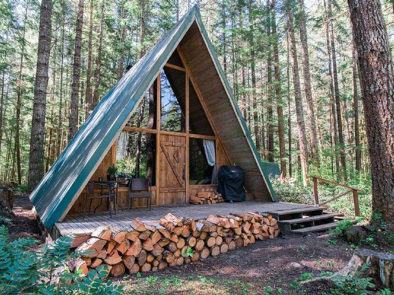 New Rental! Modern A-frame in wooded wonderland, holiday rental in Elbe