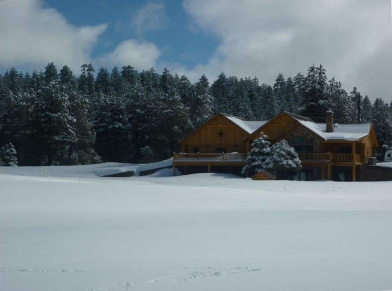 Beautiful Log Cabin Williams ~AZ~ Grand Canyon Destination, location de vacances à Williams
