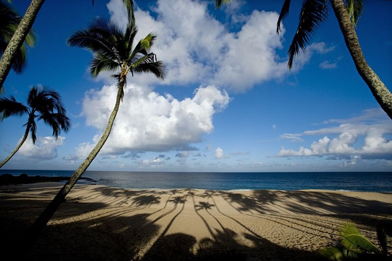 Beautiful North Shore Home at Ke Iki Beach (available 30 days or longer), holiday rental in Haleiwa
