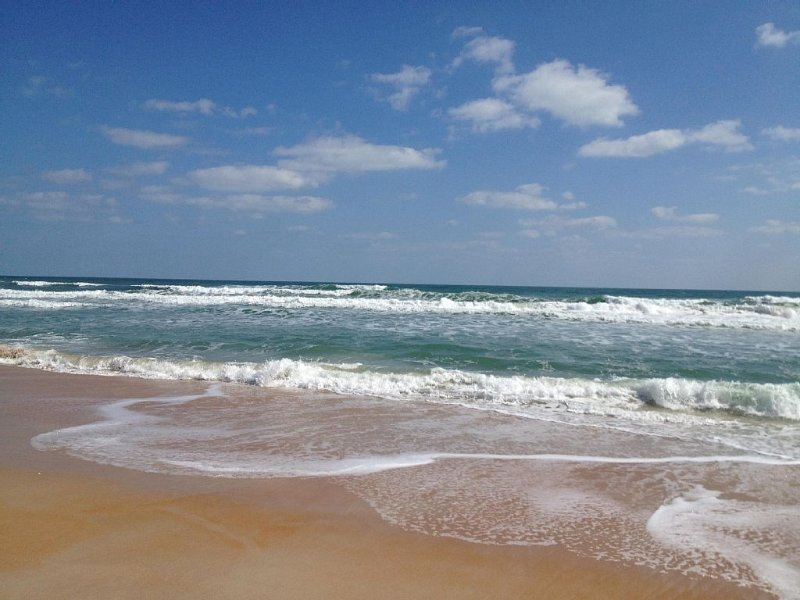 RATED #3 BY TRIP ADVISOR IN 2016 - AFFORDABLE SUMMER BEACH DESTINATIONS, alquiler de vacaciones en Flagler Beach