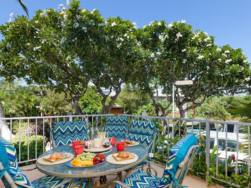 Large Lanai with the dining set and gas BBQ off the living room.