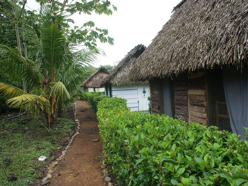 Walkways around the property to view the wildlife and fruit trees and vegetables