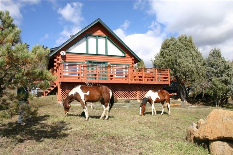 Beautiful Log Home on Five Acres with Horse Facilities!, holiday rental in Pagosa Springs