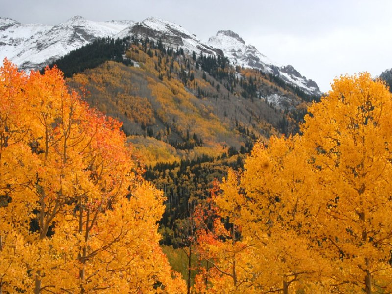 October 2012 San Juan Skyway colorful drive. Photographers paradise!