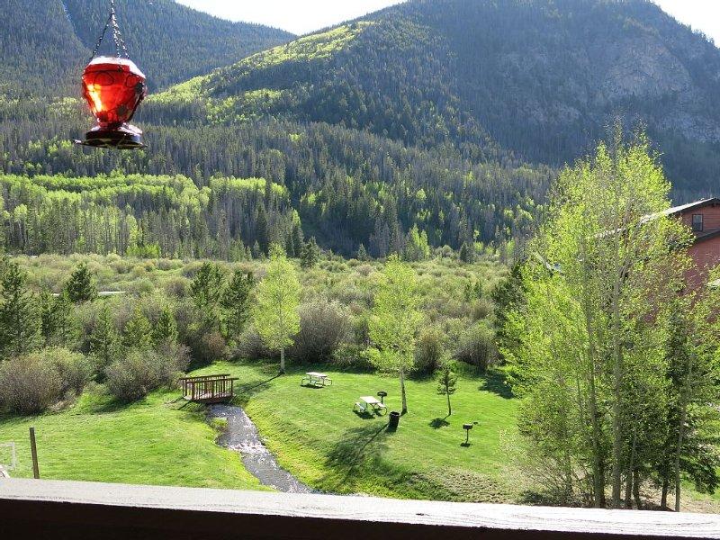 3 Bed/2 Bath - Near Ski Resorts - stream view - Great Pool Hot Tubs Garage, holiday rental in Frisco