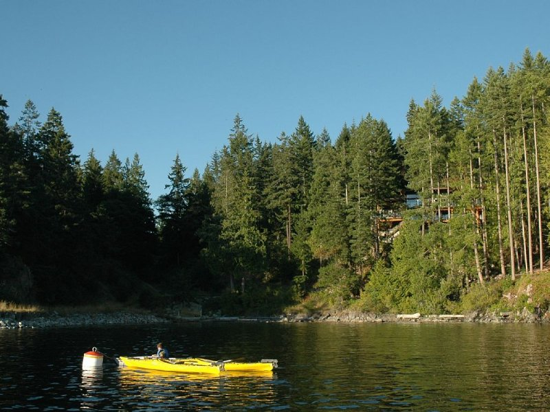 Mooring buoy, bay, home in the trees.