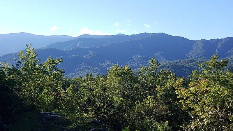 Mountain Views & Privacy, vacation rental in Gatlinburg