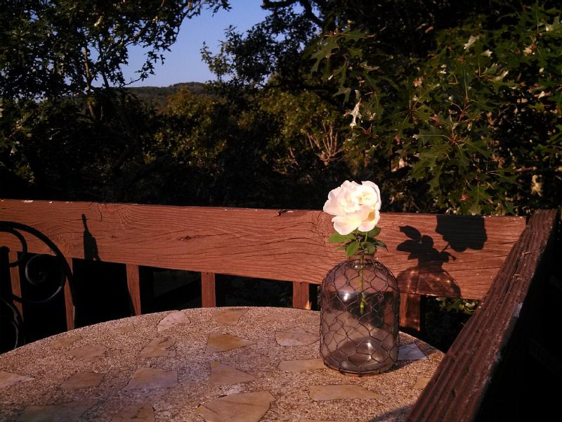 Romantic & Secluded Hill Country setting, holiday rental in Blanco