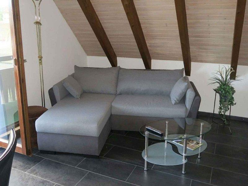 Ferienwohnung 75qm, 2 Schlafzimmer, max. 4 Personen, location de vacances à Schonach
