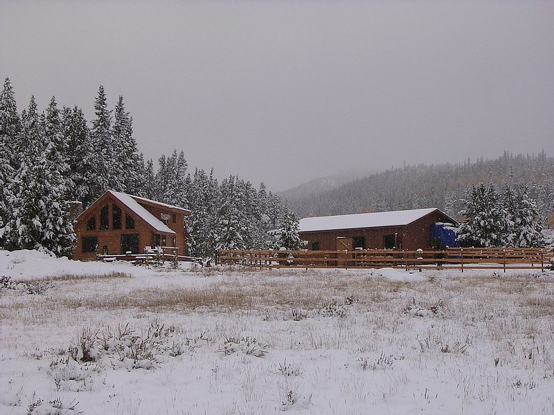 Beautiful, Secluded Log Cabin On 10 Acres 24 Miles From Breckenridge (Fairplay), casa vacanza a Fairplay