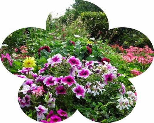 Label ferme fleuries