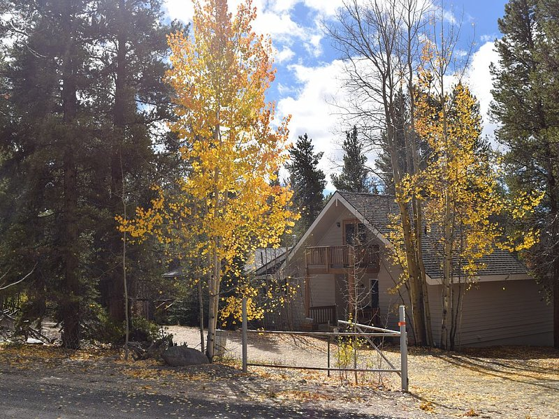 Big & Cozy Mountain Home- Perfect for big families or groups, holiday rental in Leadville