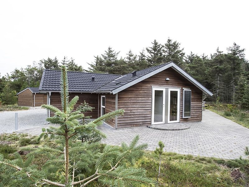 holiday home with internet, located by sea, fjord and lake in National Park Th, holiday rental in Agger