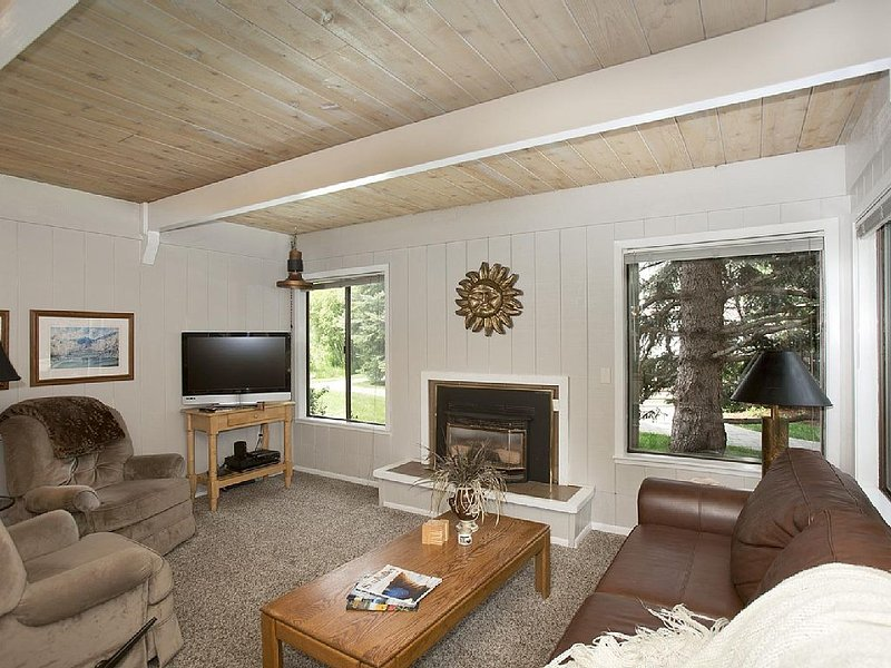 Living Room, TV, Wifi, Gas Fireplace, Leather Couch (pull out)