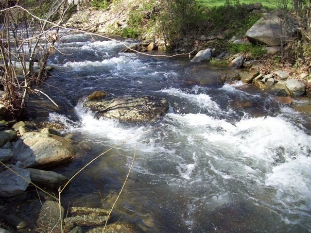 Rushing Trout-Stocked Creek: 10 acres, WiFi, & Hot Tub!, holiday rental in Boone