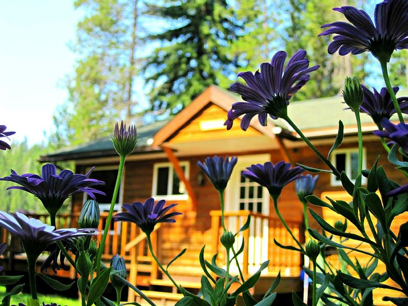 A Secluded Mountain Paradise - surrounded by the river, trees and wildlife, location de vacances à Golden