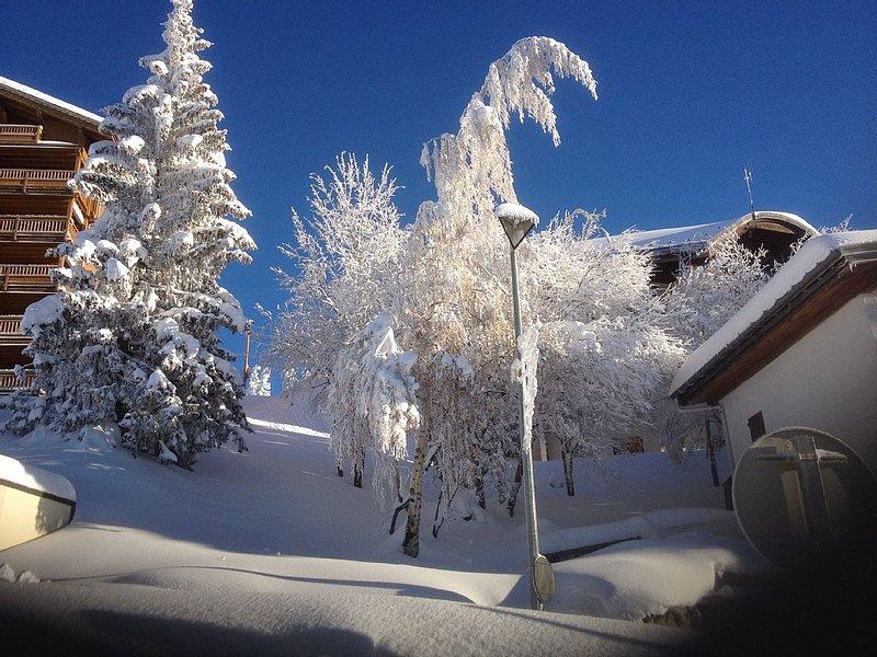 Appartement de 50m2 pour 6/8 personnes au ski, vacation rental in Montvalezan