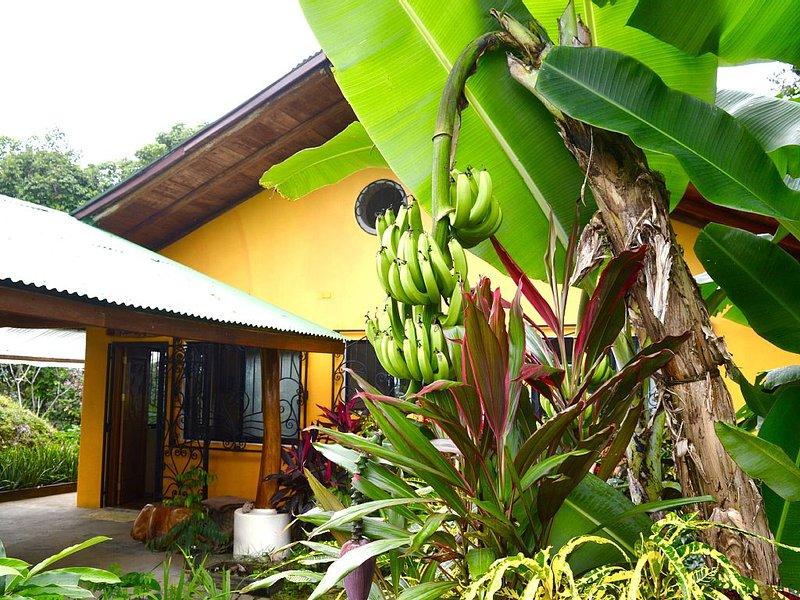 Villa Shanti Ocean View Jungle Apt, holiday rental in Carara