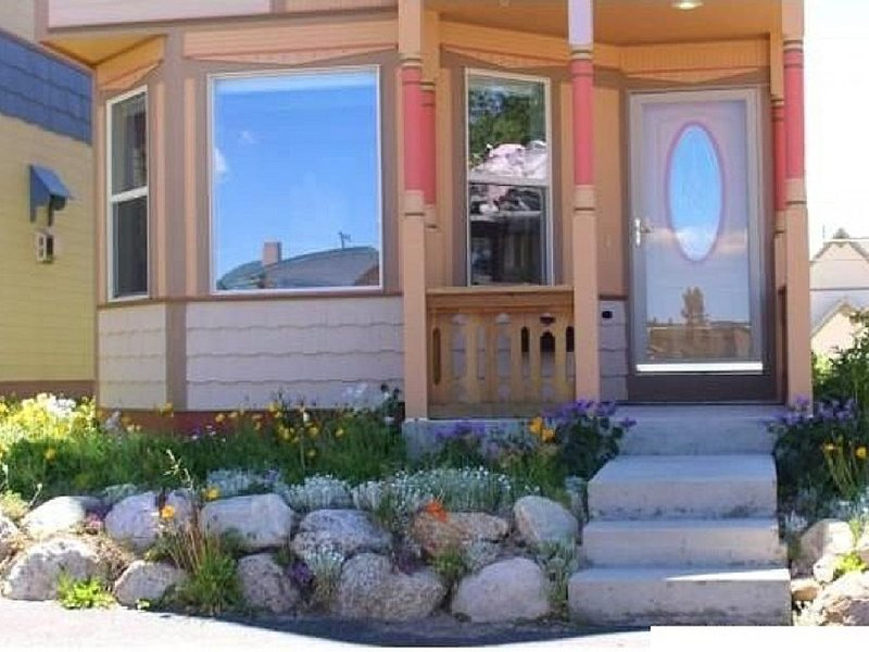 The Alpine Perch  -  Expansive views, downtown location, and new construction., vacation rental in Leadville